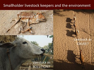 Smallholder livestock keepers and the environment