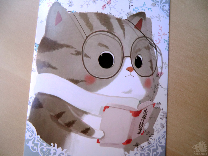 Cute Cats MO CARD
