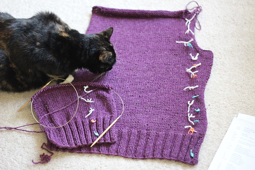 Cardigan in progress