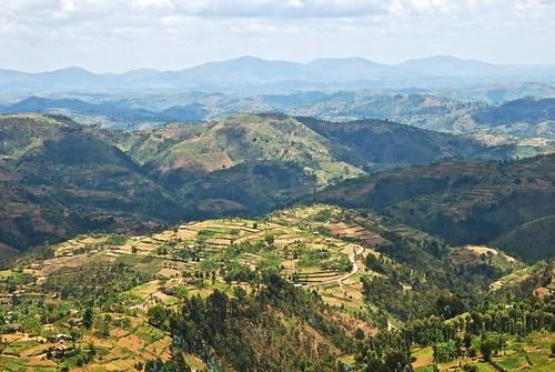 men children women farming livelihoods pastorallife agricultureactivities