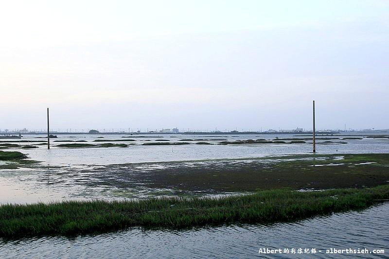 雲林口湖.成龍濕地