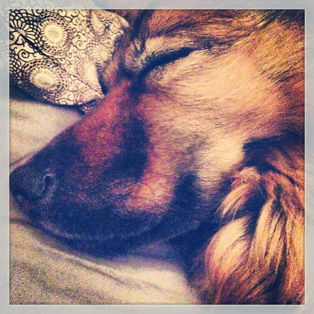 Bedtime cuddles.