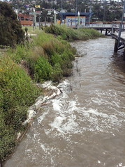 Home Point Parade, Launceston, TAS Photo not taken precisely at high tide, but you can see the water level is high.