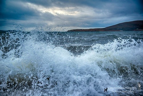 Capturing the Waves