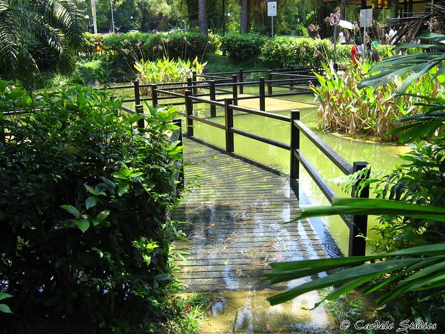 Ridout Tea Garden 03