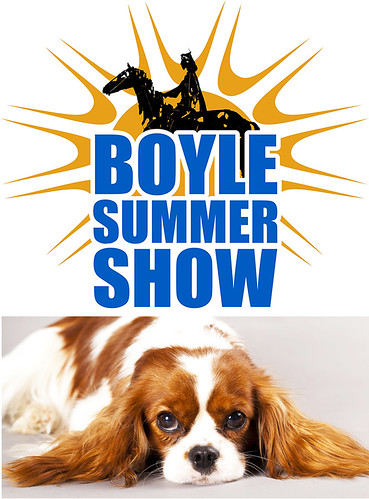 Boyle Summer Show Dog