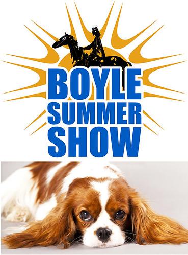 Boyle Summer Show Dog