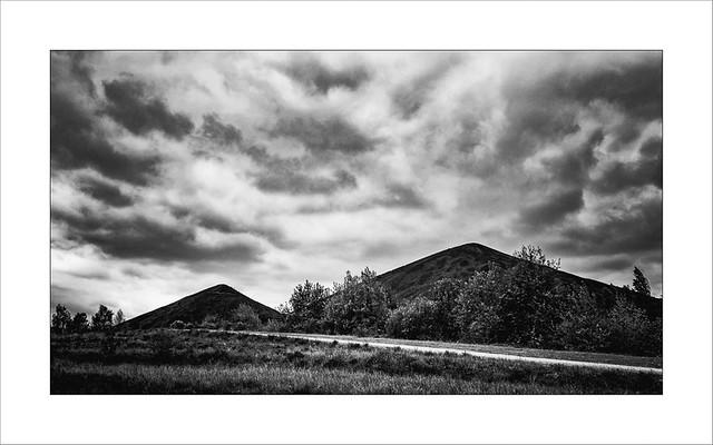 #Workerland 38