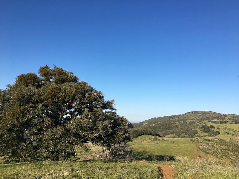 Sierra Pelona Ridge
