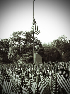 Field of Flags