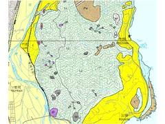 杉原灣也是屬利吉混同層:亮黃色區域(地球公民基金會提供)