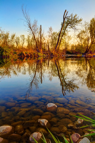 trees nature water canon reflections river landscape rocks sigma idaho boise 7d hdr boiseriver photomatix 1750mm