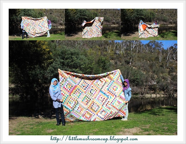 scrappy trip along _ hold on to the quilt