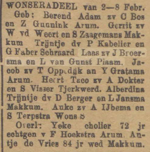 Nieuw Advertentieblad 13 Feb 1901 Laas Broersma Birth copy