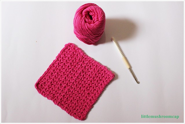 crochet dishloth 1-end