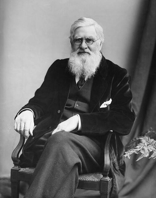 Alfred-Russel-Wallace-c1895-540px