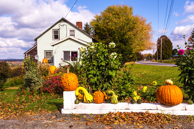 Pumpkin display in Sudbury, Vermont