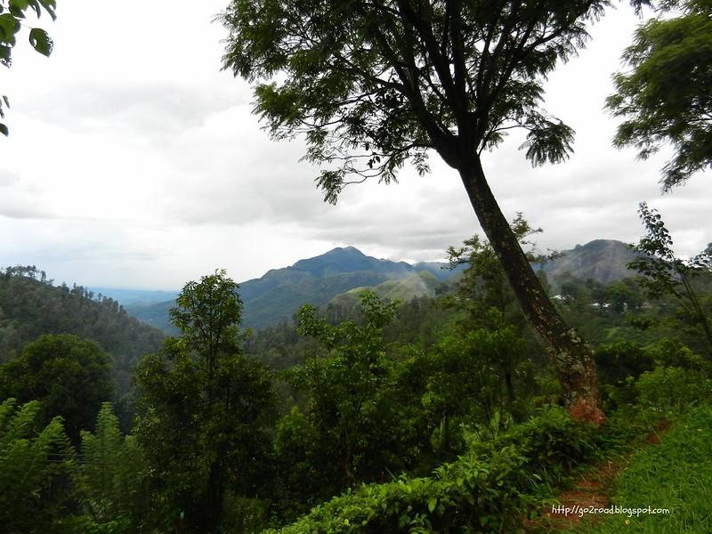 Виды Эллы на Шри Ланке