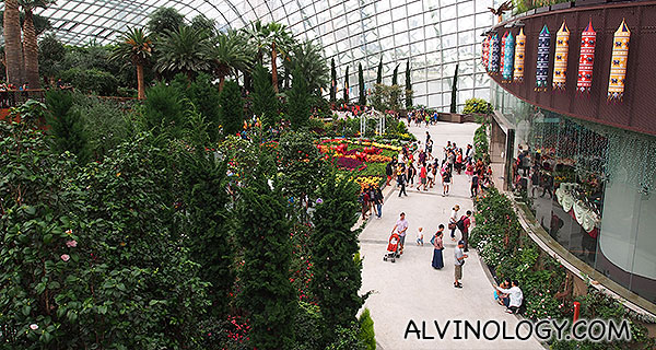 At the Flower Dome