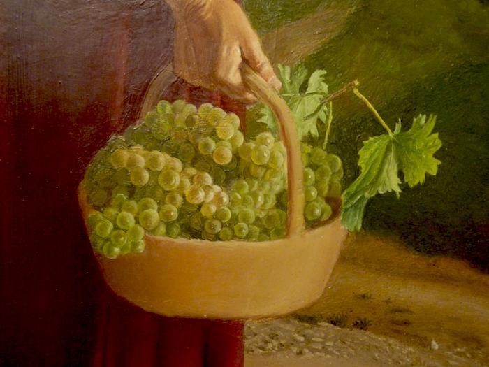 particolare uva cesarino vincenzi