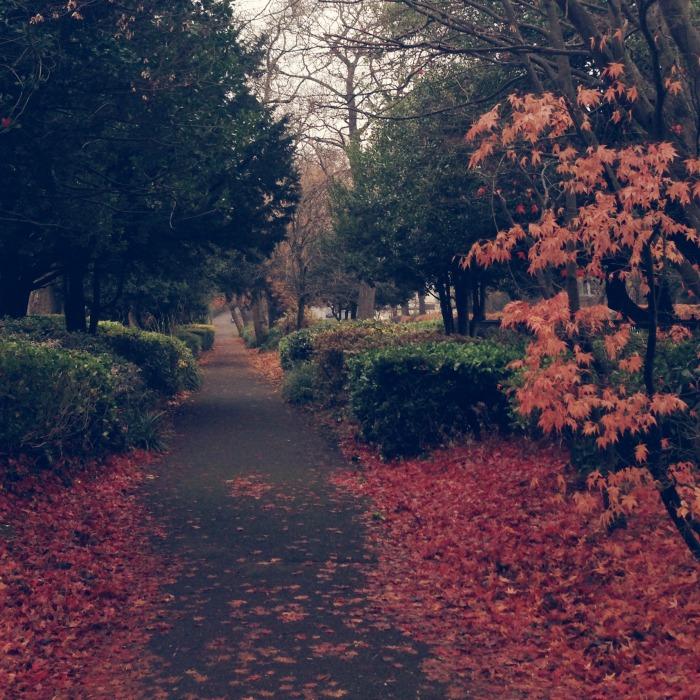 Queens Park Glasgow