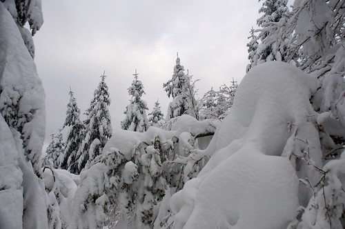 2013-11-26_Mont Fourcat 25