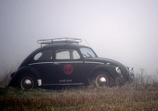 A Beetle in the fog