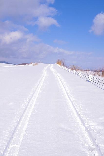 Virgin Snow Road をゆく