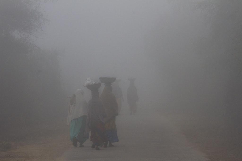 14_01_20142916055669_womenfolk_in_fog_scape