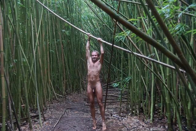 naturist 0000 Na'ili'ili-haele, Maui, Hawaii, USA