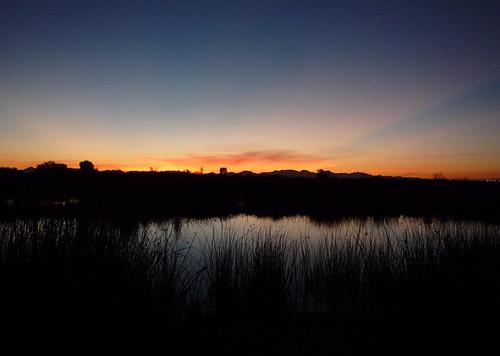 arizona sunrise east wetlands yuma