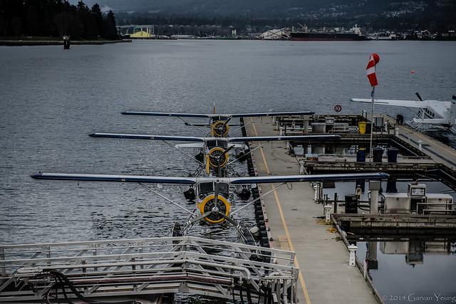Coal Harbor Planes