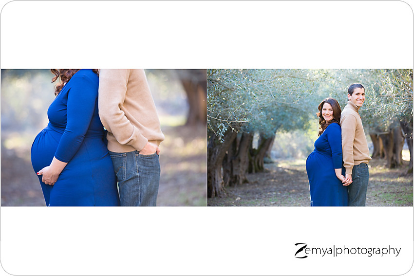 b-B-2014-02-23-03 - Zemya Photography: Bay Area pregnancy photographer