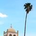 Torre y palma por HectorVaM
