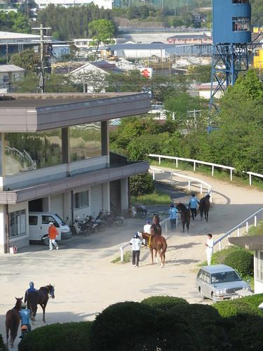 佐賀競馬場の検量所から厩舎への道のり