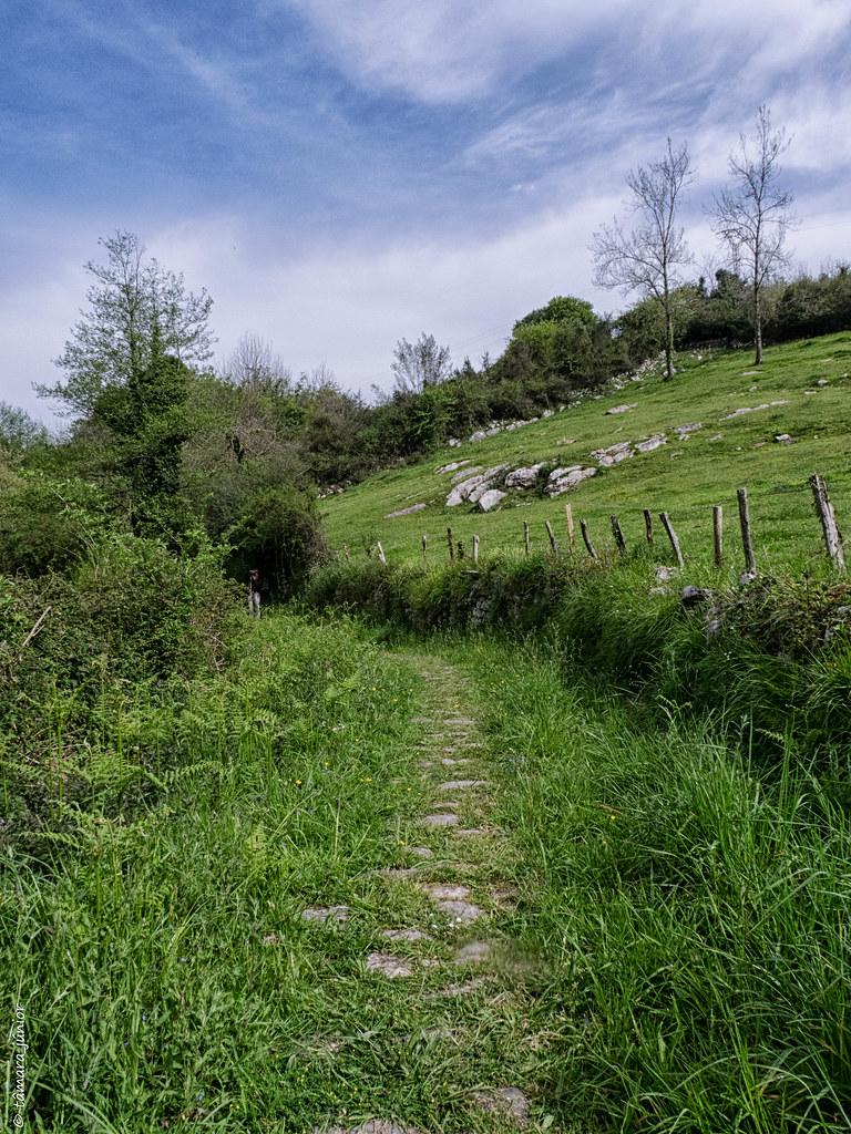 28.- Camino del Salvador-8ª etapa (256)
