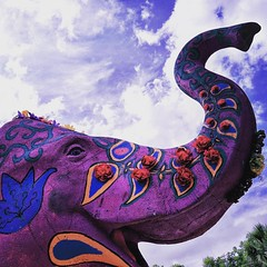 The work of art is a scream of freedom. ➖Christo . . . #purple #elephant #flowers #sky #clouds #painted #art #sculpture #animal #colorful #street #streetphotography #streetphoto #safetyharbor #tampabay #florida