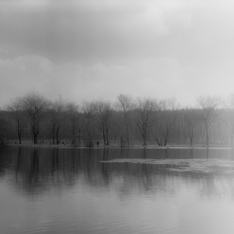 Lake and trees - Copyright © 2013 Marcin Michalak Photography.