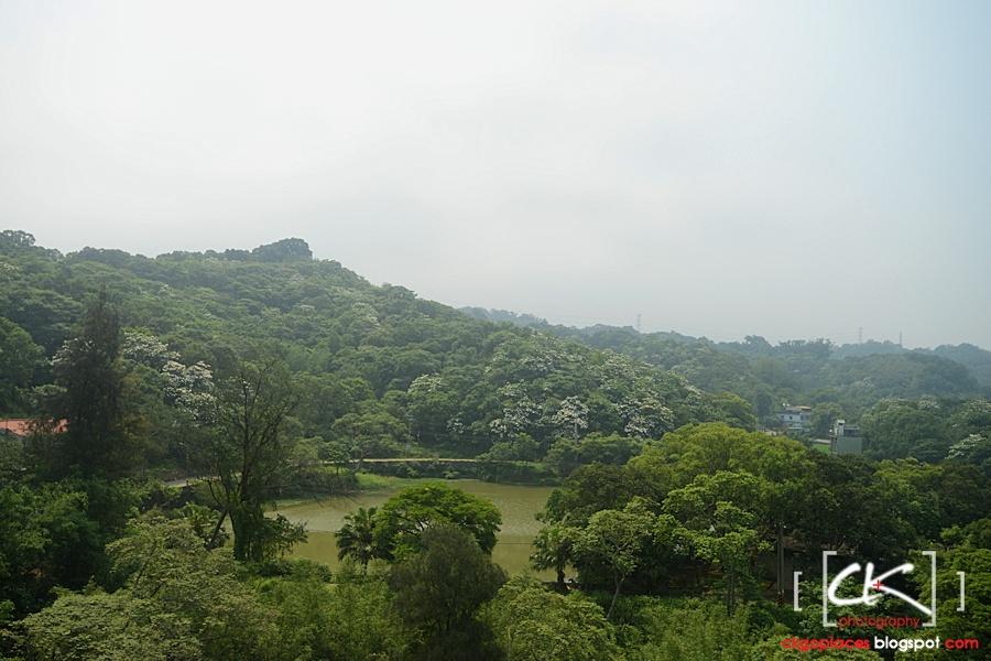 Taiwan_006