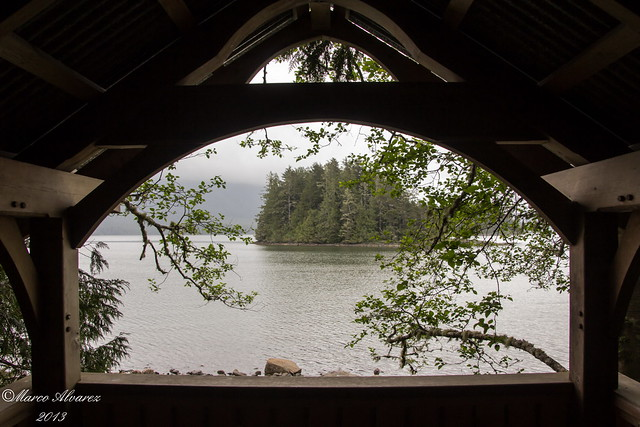 Racoon Island, Tofino BC