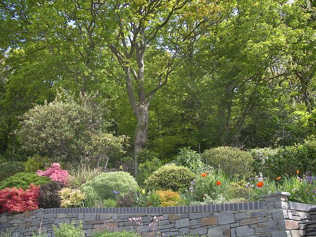 Garden and woods