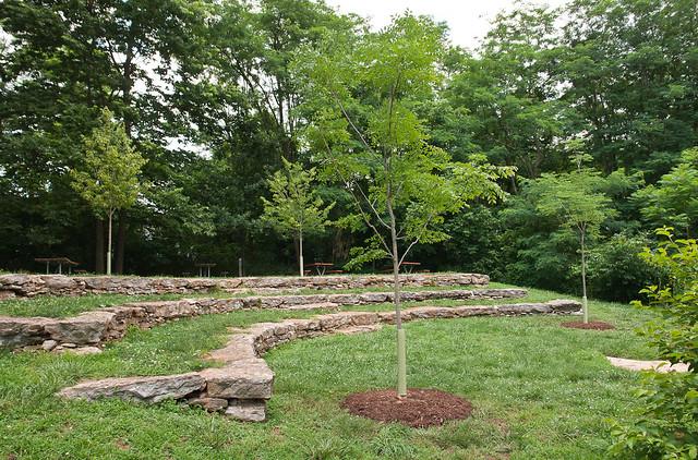 Rita's Trees_0865