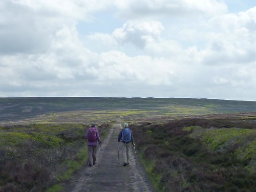 along the moors on the railroad grade