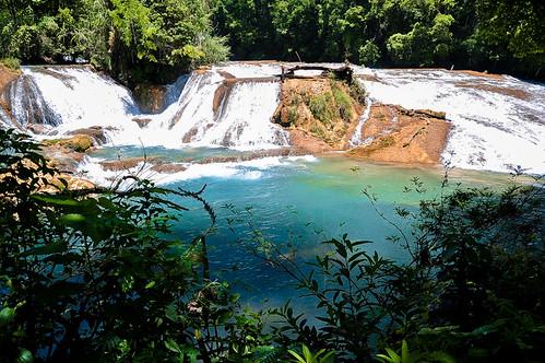 Cascadas de Agua Azul (61)