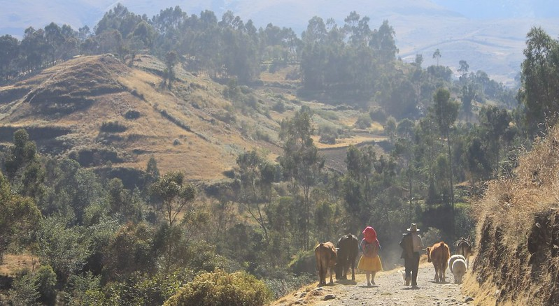 On the climb to Quebrada Quilcayhuanca