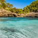 Small photo of S'Almunia, Mallorca
