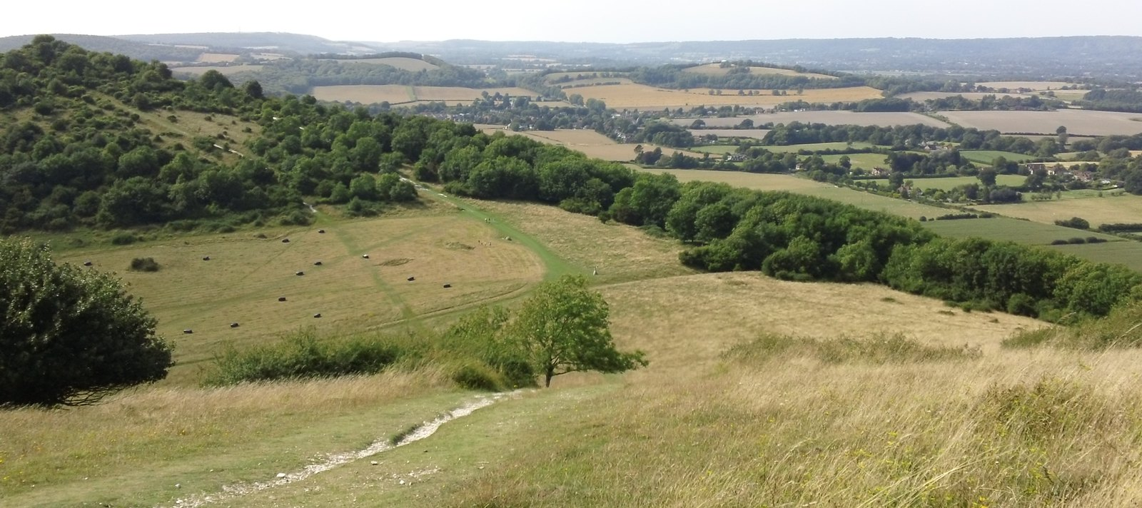 Beacon Hill South Downs Way, west
