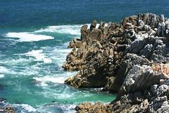 Hermanus, Cape Town