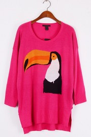 loose-bird-graphic-sweater