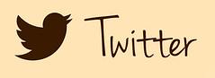 Twitter Blog Logo